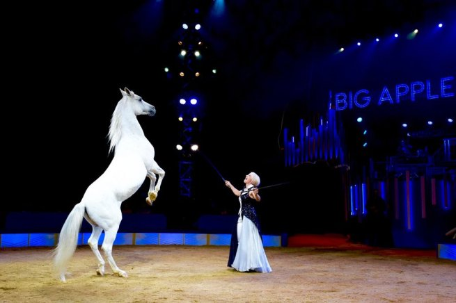 Big Apple Circus 2 - Photo credit Juliana Crawford